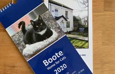 Boote Home for Cats Calendar 2020